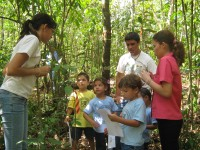 Programa Bosque Urbano UPR Bayamón