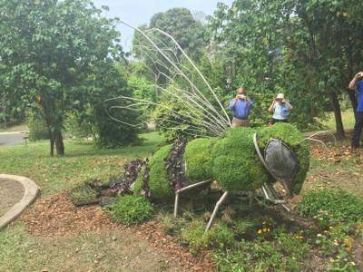 Escultura viva de abeja en la Semana de los Polinizadores