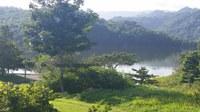 DRNA abre convocatoria de propuestas para proyectos de forestación urbana y manejo de ecosistemas urbanos
