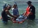 DRNA rescata manatí recién nacido separado de su madre en playa de Aguadilla
