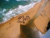 Preparan las playas para la época de anidaje del Tinglar
