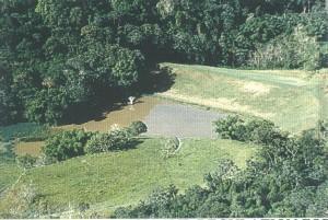 Represa Dagüey, en Añasco