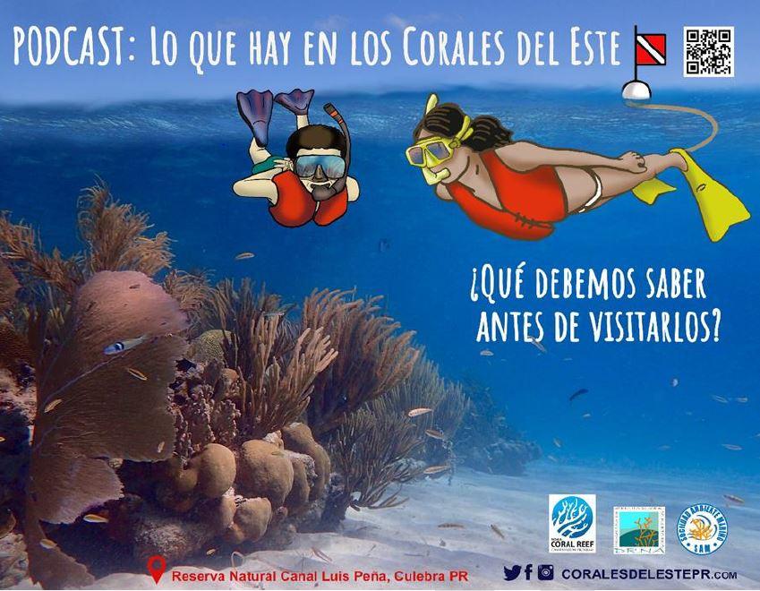 Podcast: Lo que hay con los corales del Este