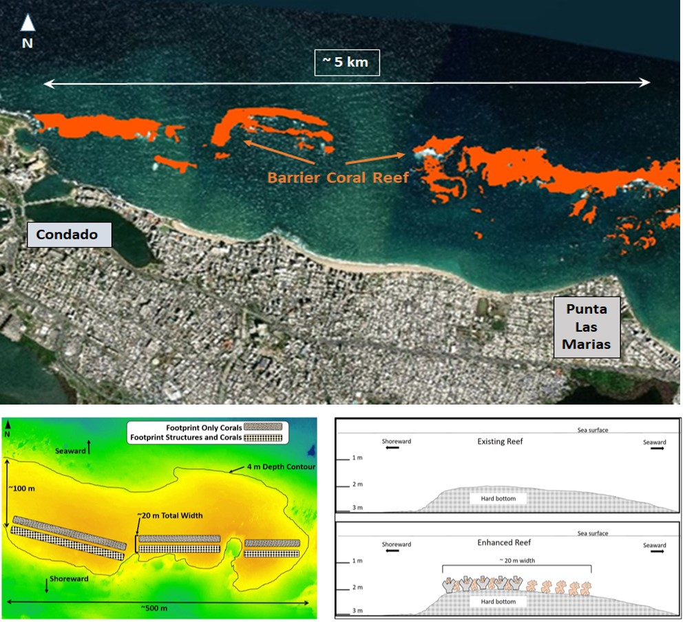 Figure: Location for proposed San Juan Metro Mitigation Project